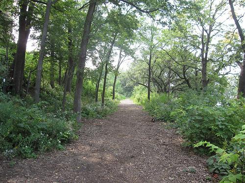 St._Marys_trails.jpg