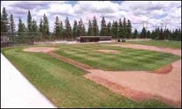 Nike Baseball Camp Whitworth University